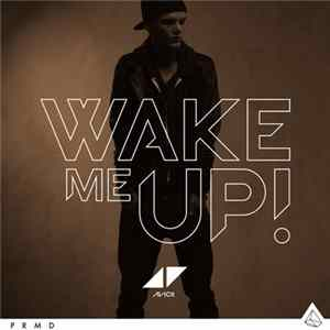 Avicii - Wake Me Up para Descargar Gratis